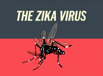 Everything known about the Zika Virus, so far