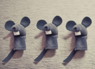 Mouse Study May Offer Clues to Mysteries of Schizophrenia